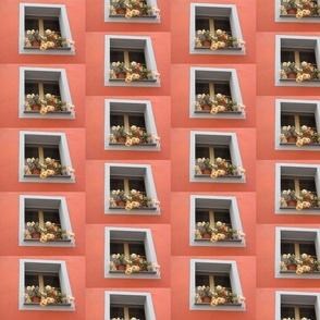 Flowers In A Window