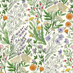 Wildflowers Lavender, chamomile, Calendula, Red Clover, cornflower, Dandelion, elderflower, Rosehip, bee 422mmxH591mm