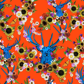 Sommar Stag Blooms
