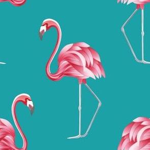 Teal flamingo