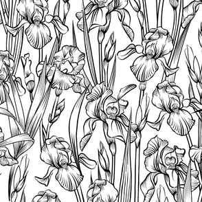 Toile Iris Flowers   Black + White