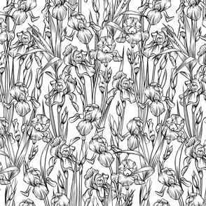 Toile Iris Flowers Small   Black + White