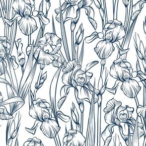 Toile Iris Flowers   Navy + White