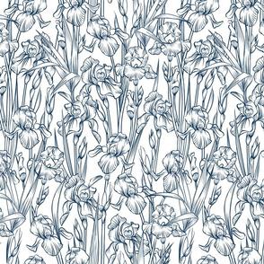 Toile Iris Flowers Small   Navy + White