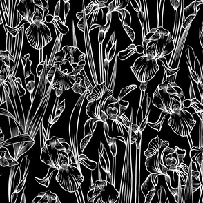 Toile Twilight Iris   Black+White