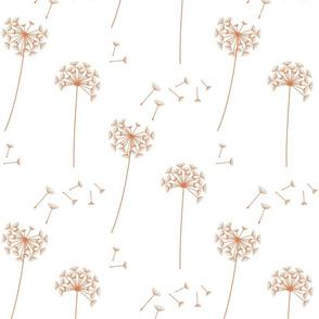 dandelions {1} terracotta earthy tones
