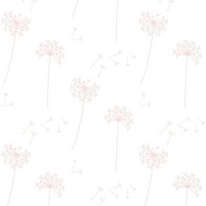 dandelions {1} blushing pink earthy tones