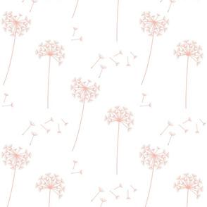 dandelions {1} peachy pink earthy tones