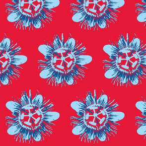 Passion Flower, Blue on Red.