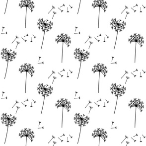 dandelions {1 smaller} black and white 25% smaller scale