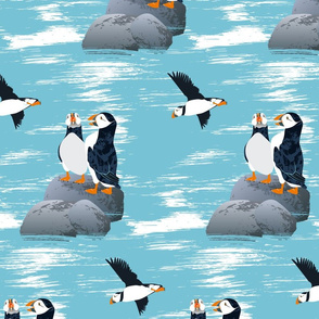 Puffins-TURQUOISE