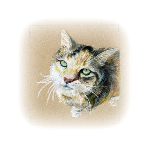 Loving kitty Cat - soft edge