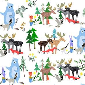 Canadian Animals Powwow