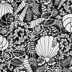 medium shells and mussels on linen in black and white