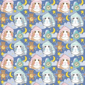 small bedtime guinea pigs