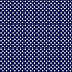 Star storm microdot- navy blue