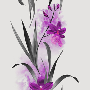 Purple Orchids on Grey