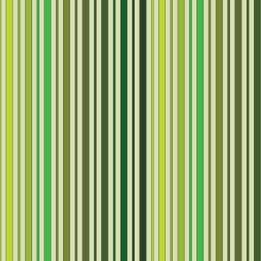 Striped - Green