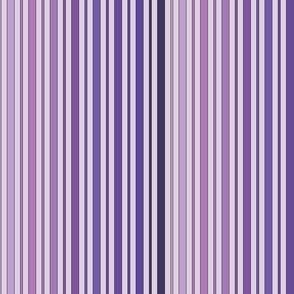 Striped - Purple
