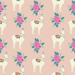 pink_Lama_Rose_seaml_stock