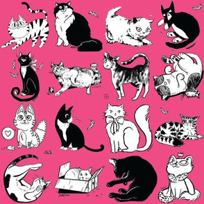 Cats of Insider Art - Pink