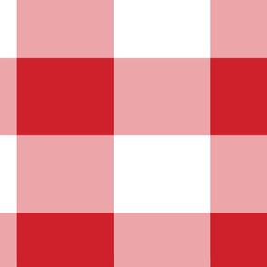 Red and White Buffalo Plaid Pattern