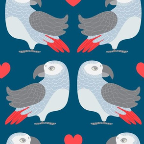 Parrot Love - UnBlink Studio by Jackie Tahara