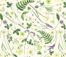 Midsummer Wild Flowers