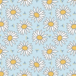 white daisies on light blue small