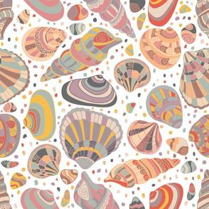 delicate shells