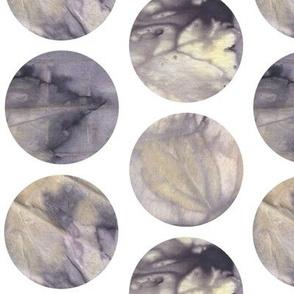 Eco Print Circles
