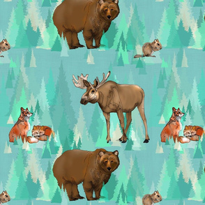Wild Animals of the Forest