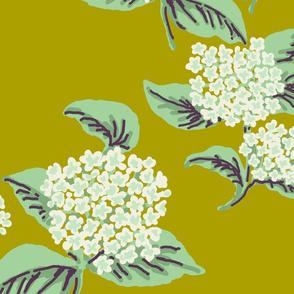 Hydrangeas Chartruce