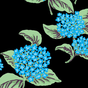 Hydrangeas Blue Black