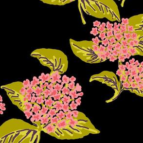 Hydrangeas Pink Black