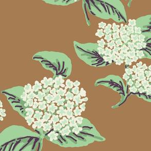 Hydrangeas Coco cream