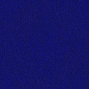 Midnight Blue Leather