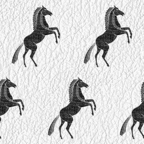 Black Horses on white Leather