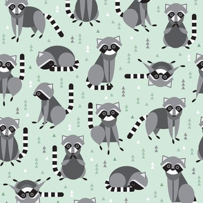 raccoons on green