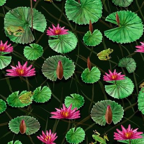 Waterlilies & Frogs, dark green
