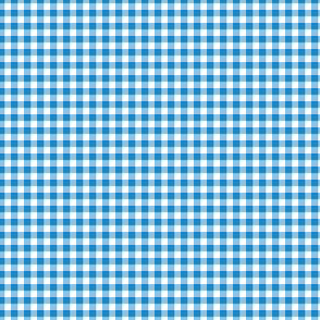 "1/8"" gingham - bright blue and white"