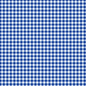 """1/8"""" gingham - royal blue and white"""