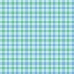 double gingham - light blue and green