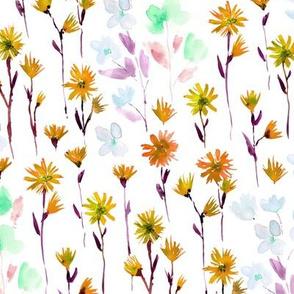 Mustard Bloom in Verona - watercolor flowers - blooming spring
