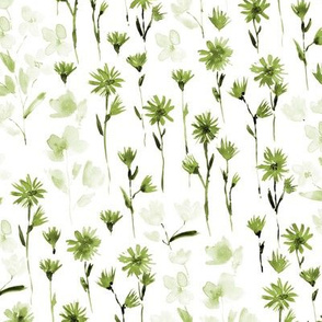 Khaki bloom in Verona - watercolor flowers - blooming wildflowers spring in olive green