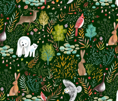 wildlife animals nature forest // medium scale