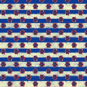 Paws across America- blue