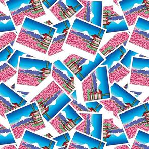 My. Fuji Polaroids