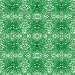 Birch Cells (Pith) - Green