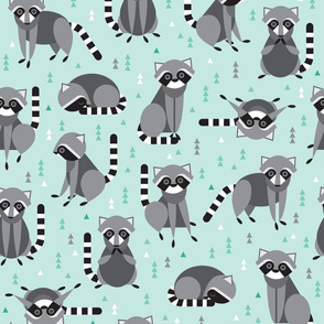 raccoons on mint